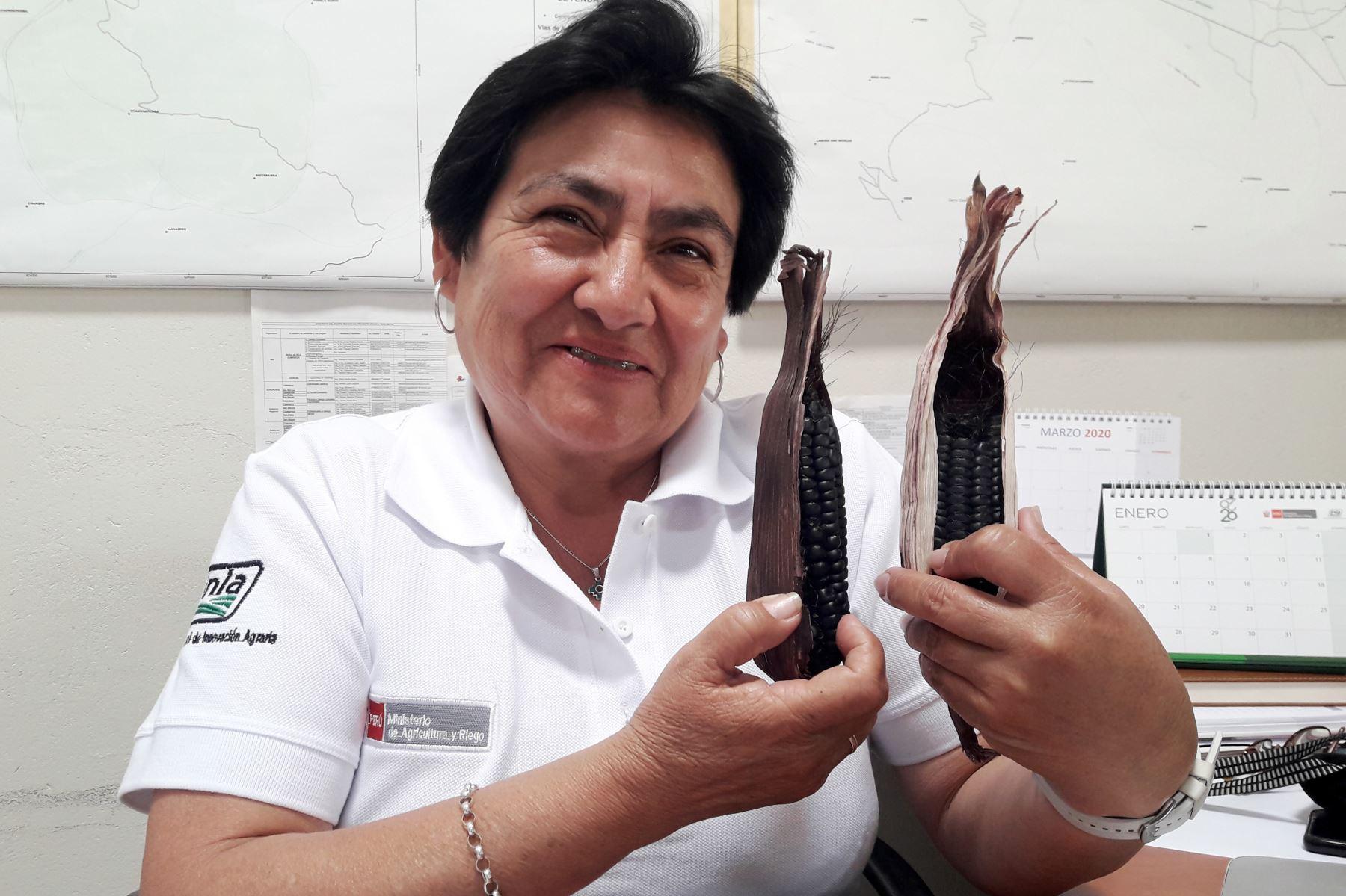 La investigadora cajamarquina Alicia Medina Hoyos obtuvo el primer lugar en el concurso nacional Ingeniera 2020 por los estudios sobre el maíz morado.