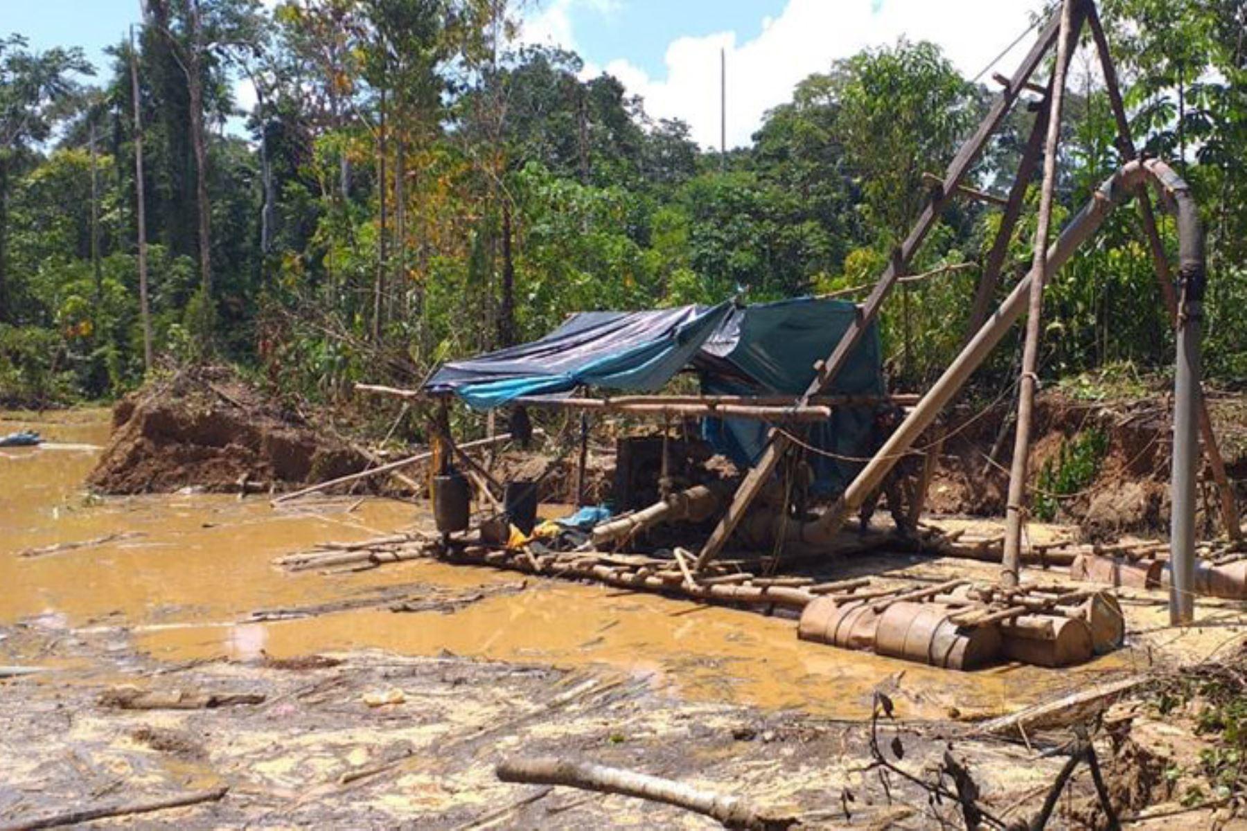 En el sector de Mangote, de la zona de amortiguamiento de la Reserva Nacional Tambopata, se ejecutó operativo contra la minería ilegal.