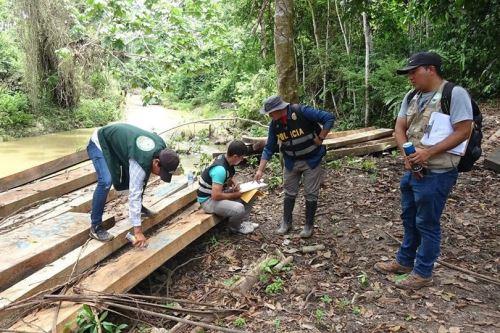 Autoridades incautan 13,000 pies tablares de madera de origen ilegal en Loreto. ANDINA/Difusión