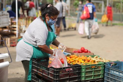 Mercado Mayorista Móvil se trasladó a Villa María del Triunfo y Ate. Foto: ANDINA/Difusión.