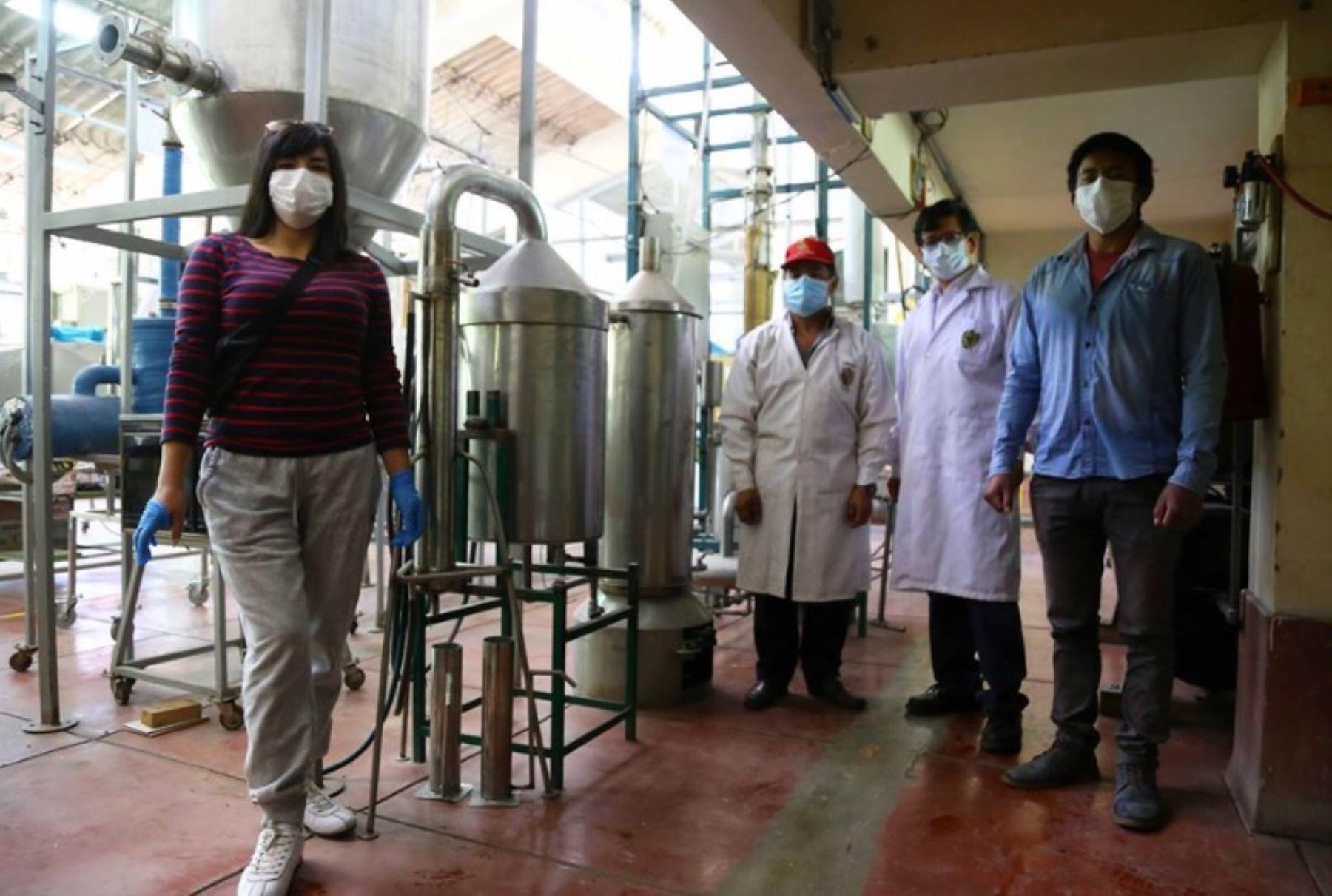 Estudiantes de la Escuela Profesional de Ingenierìa Química de la Universidad Nacional de San Cristóbal de Huamanga (UNSCH) elaborarán aceite esencial de eucalipto o eucaliptol para aliviar los síntomas del covid-19.