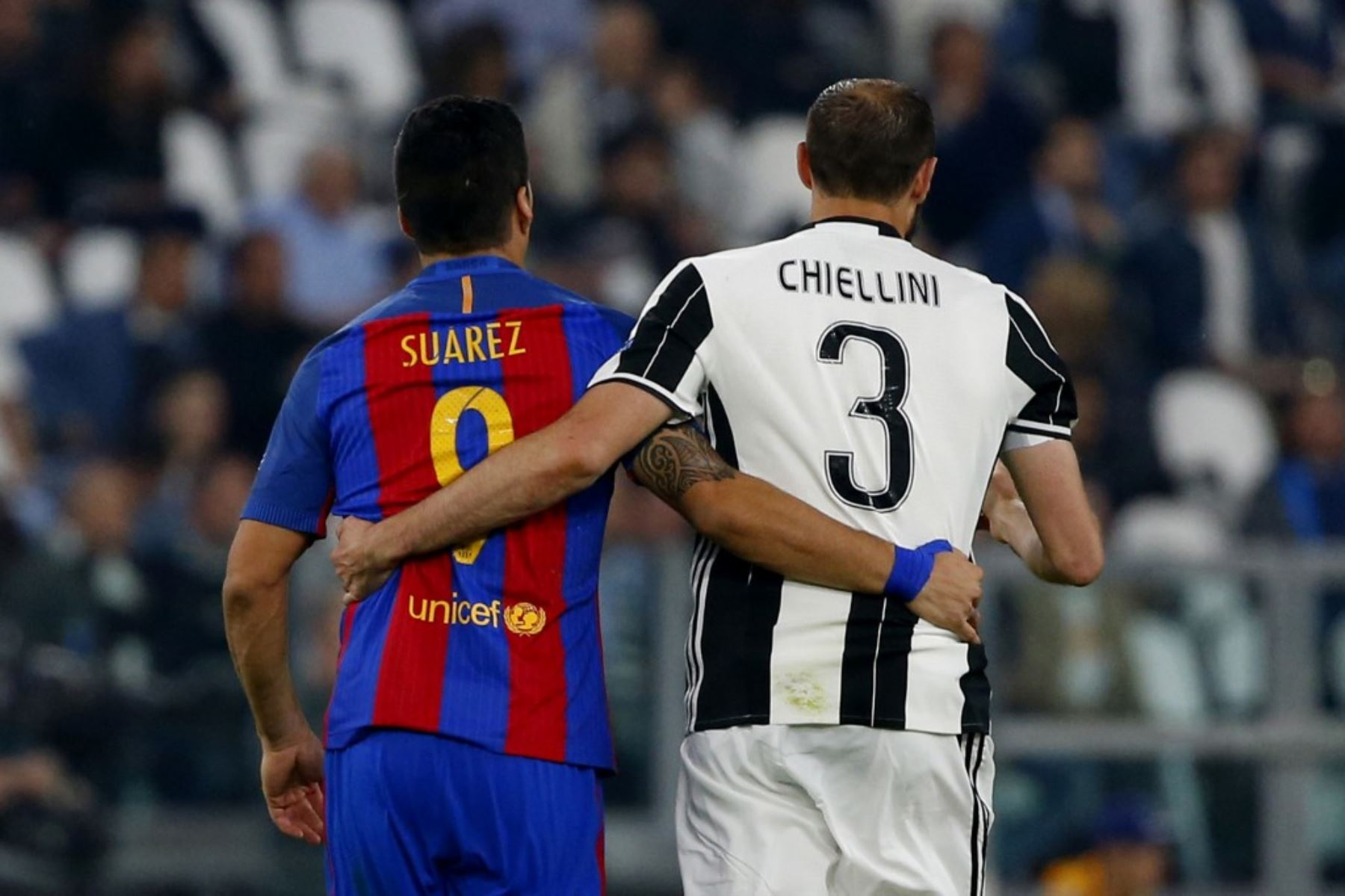 Giorgio Chiellini, defensa del Juventus Turín, disculpó y hasta elogió al uruguayo Luis Suárez por el mordisco
