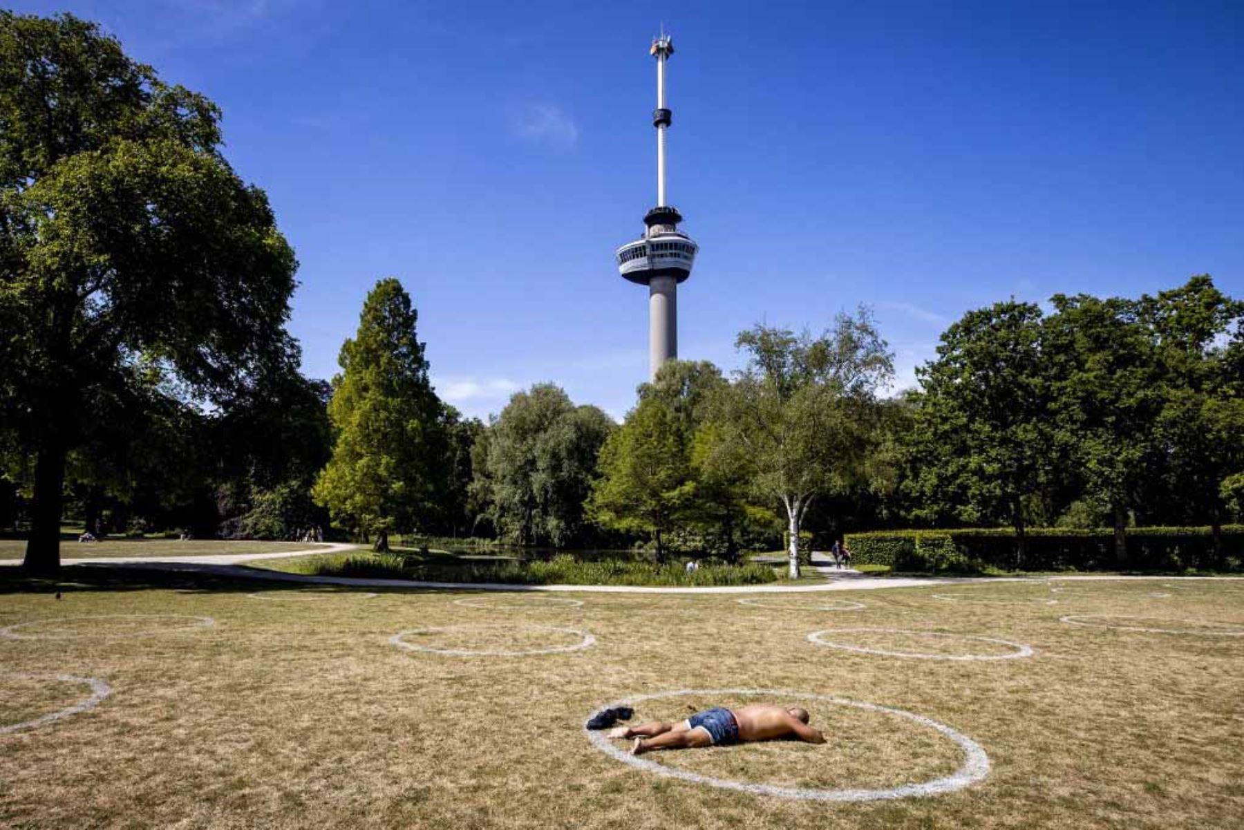 Un hombre toma el sol en el césped en uno de los muchos círculos blancos pintados a 1,5 metros de distancia por el municipio en el parque Kralingse Bos, para garantizar el distanciamiento social entre las personas que desean sentarse o tumbarse en el suelo en Rotterdam. Foto: AFP