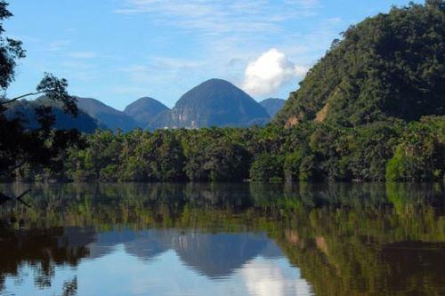Continuará restauración ecológica del área de influencia del Parque Nacional Cordillera Azul con fondo de Corea. Foto: ANDINA/Difusión