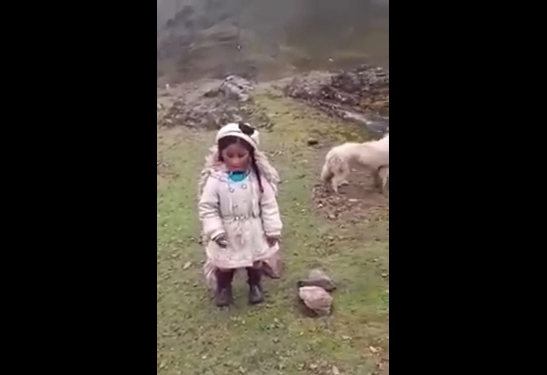 """Disfruta la tierna versión de """"El lobo y la oveja"""" dramatizado por una niña de 4 años de Pasco."""