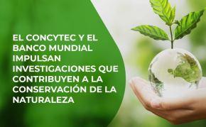 El Consejo Nacional de Ciencia, Tecnología e Innovación Tecnológica (Concytec), en convenio con el Banco Mundial, viene trabajando desde el 2017 en la implementación de proyectos e iniciativas que contribuyen al cuidado y conservación del medio ambiente, así como al desarrollo sostenible.