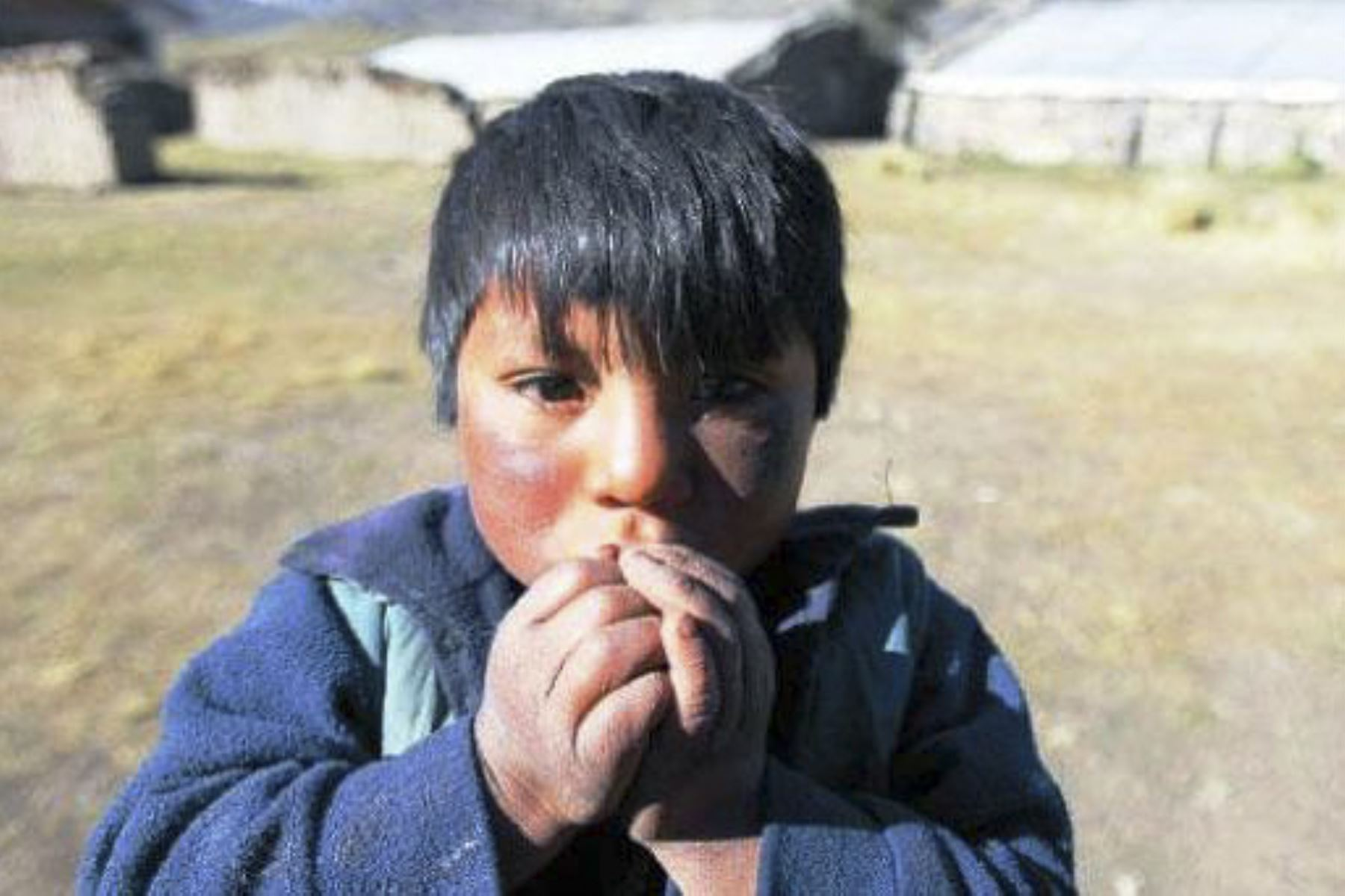El Senamhi alertó a más de 30 provincias de los departamentos de Apurímac, Arequipa, Ayacucho, Cusco, Moquegua, Puno y Tacna. ANDINA/Difusión