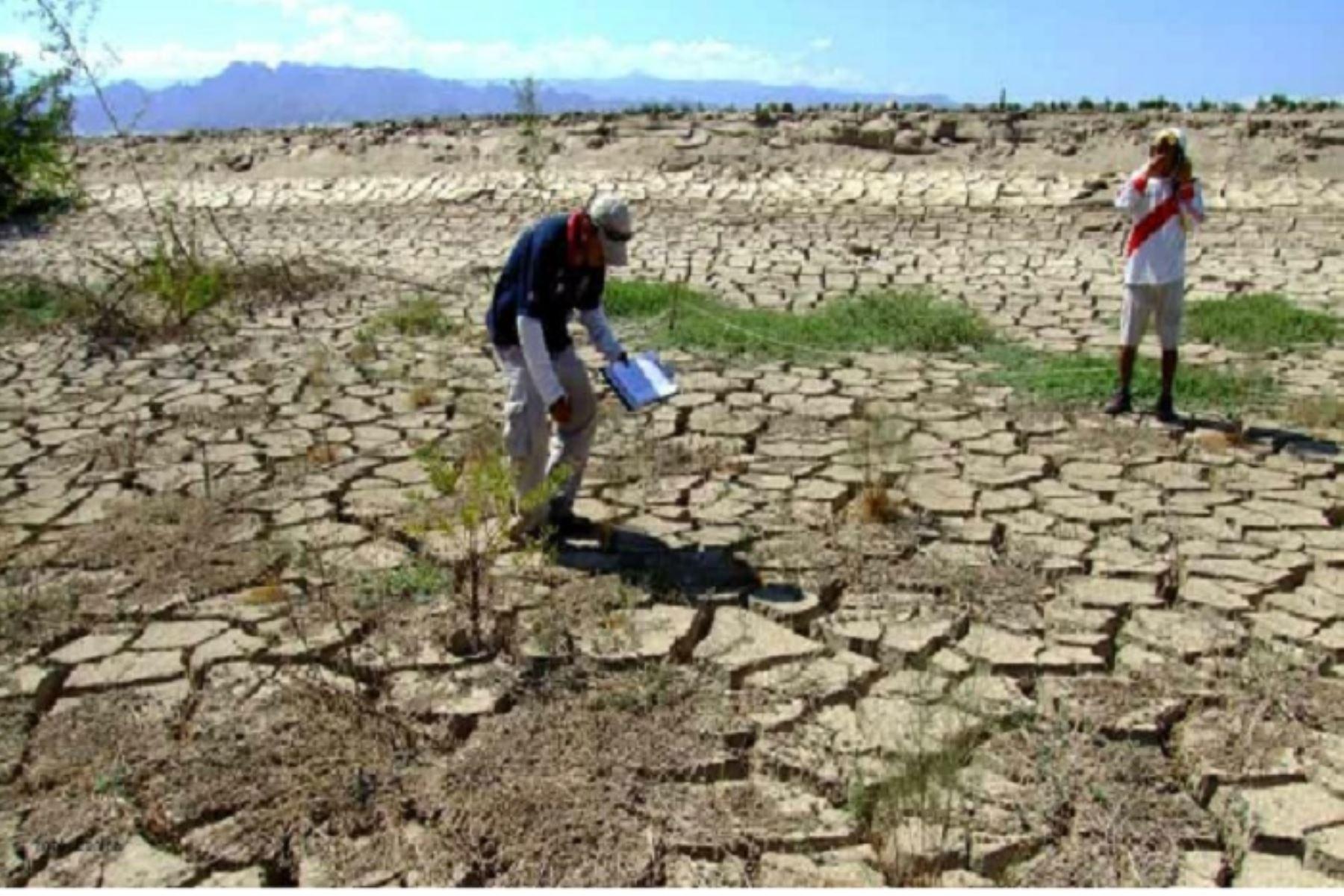 El presidente Ejecutivo del Senamhi, Ken Takahashi, mencionó que la sequía es un fenómeno complejo bastante relevante en nuestro país y que requiere un enfoque integrador.