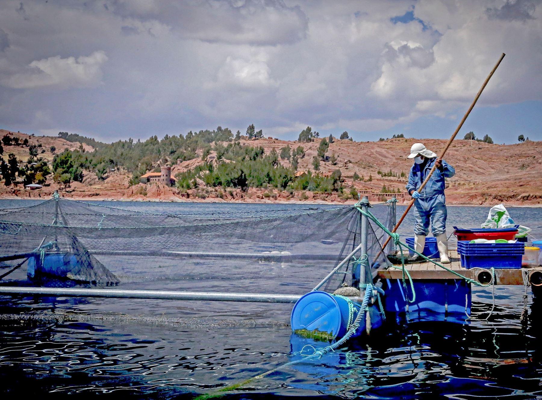 Perú y Colombia fortalecen cooperación en materia de sanidad acuícuola, destacó Sanipes.