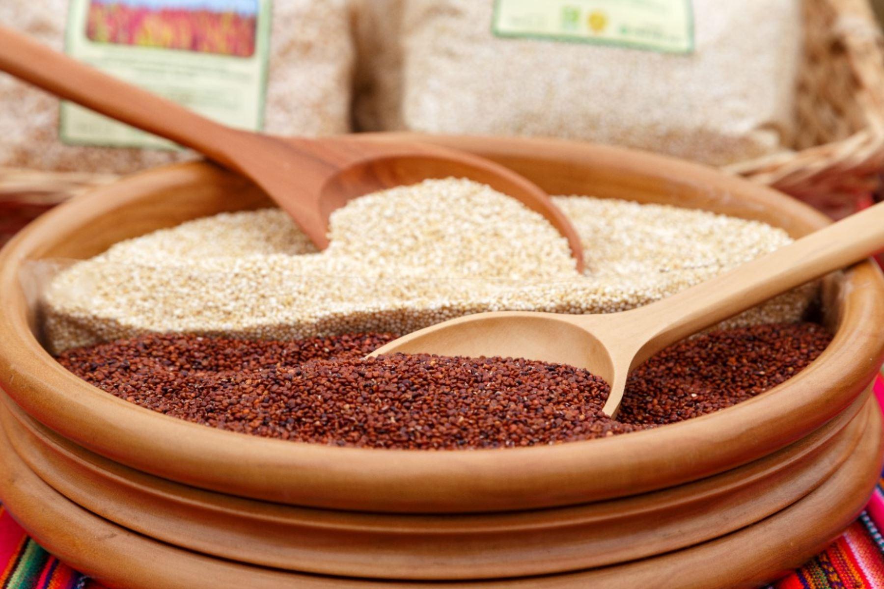 Los granos andinos, como la quinua, la kiwicha, el maíz, el sacha inchi, entre otros, son considerados superalimentos por su alta concentración de nutrientes esenciales. ANDINA/Difusión