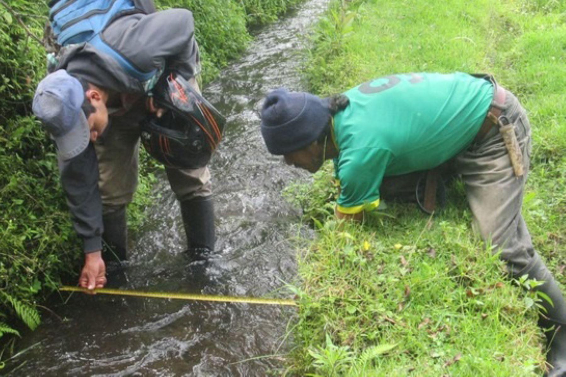 La Administración Local del Agua Jequetepeque invertirá más de un millón de soles en la limpieza de canales y drenes en la cuenca del río Jequetepeque. Foto: Minagri