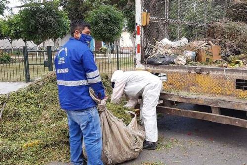 La Defensoría del Pueblo advirtió que la falta de equipos de protección pone en riesgo a los trabajadores de limpieza de Trujillo. ANDINA/Difusión
