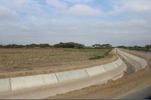 Los agricultores beneficiados producen alrededor de 2,717 hectáreas de cultivos de arroz, algodón, alfalfa y maíz.