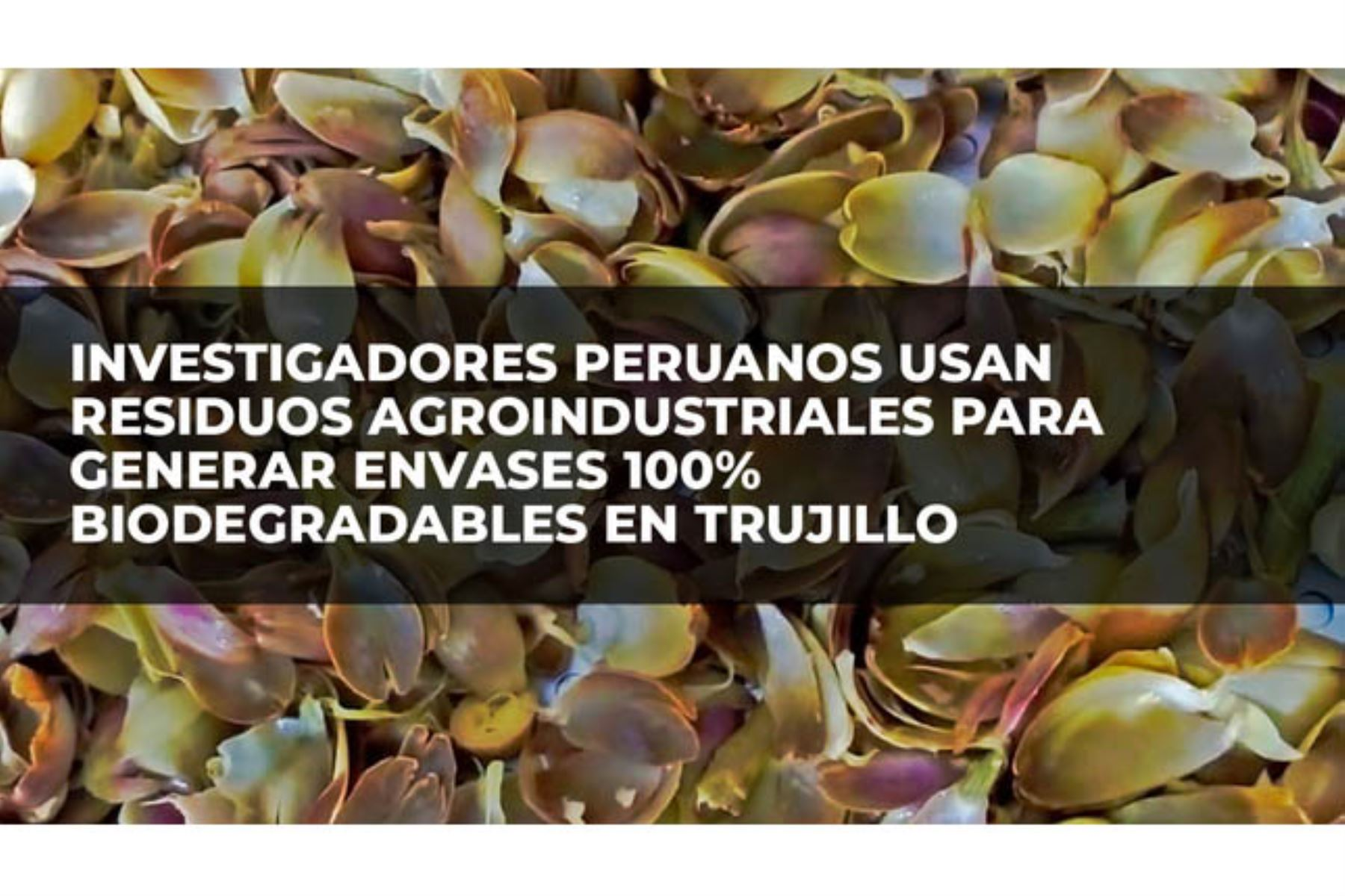 En la región La Libertad se promueve la economía circular mediante la utilización de residuos de peladilla del espárrago, semilla de palta, pepa y cáscara de mango, el orujo de la uva, y el uso de nanotecnología. Foto: ANDINA/Difusión