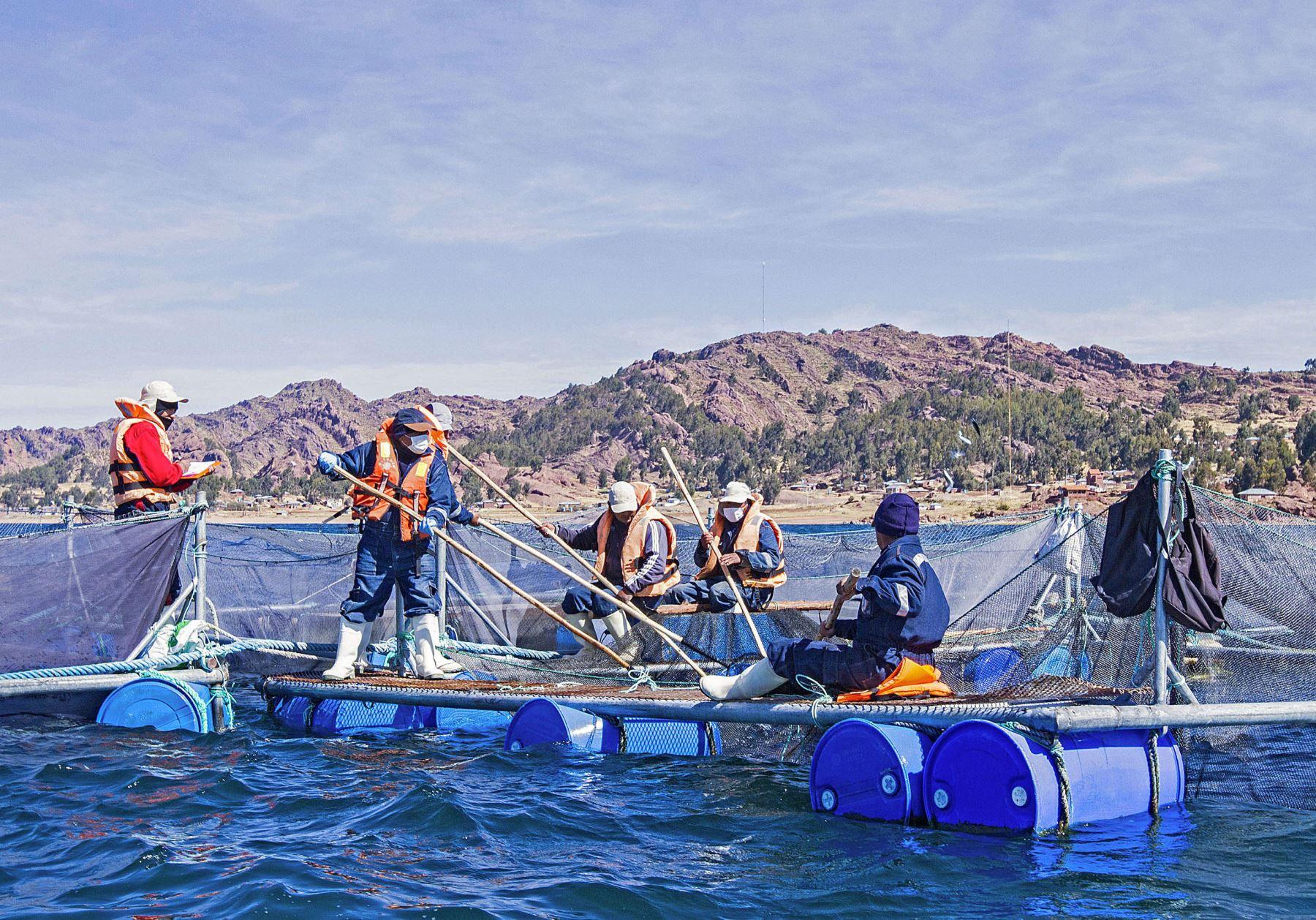 Actividad pesquera.