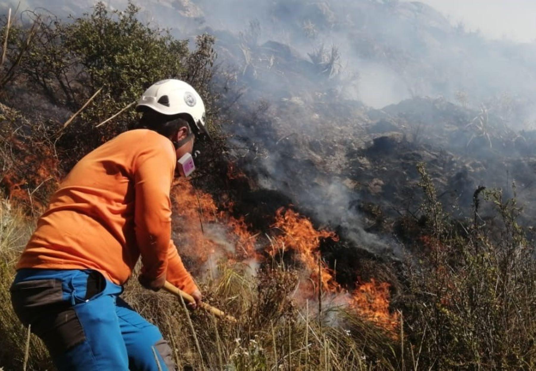 Brigadistas del COER Áncash sofocaron incendio forestal que arrasó con 200 hectáreas de pastos en el Parque Nacional Huascarán.