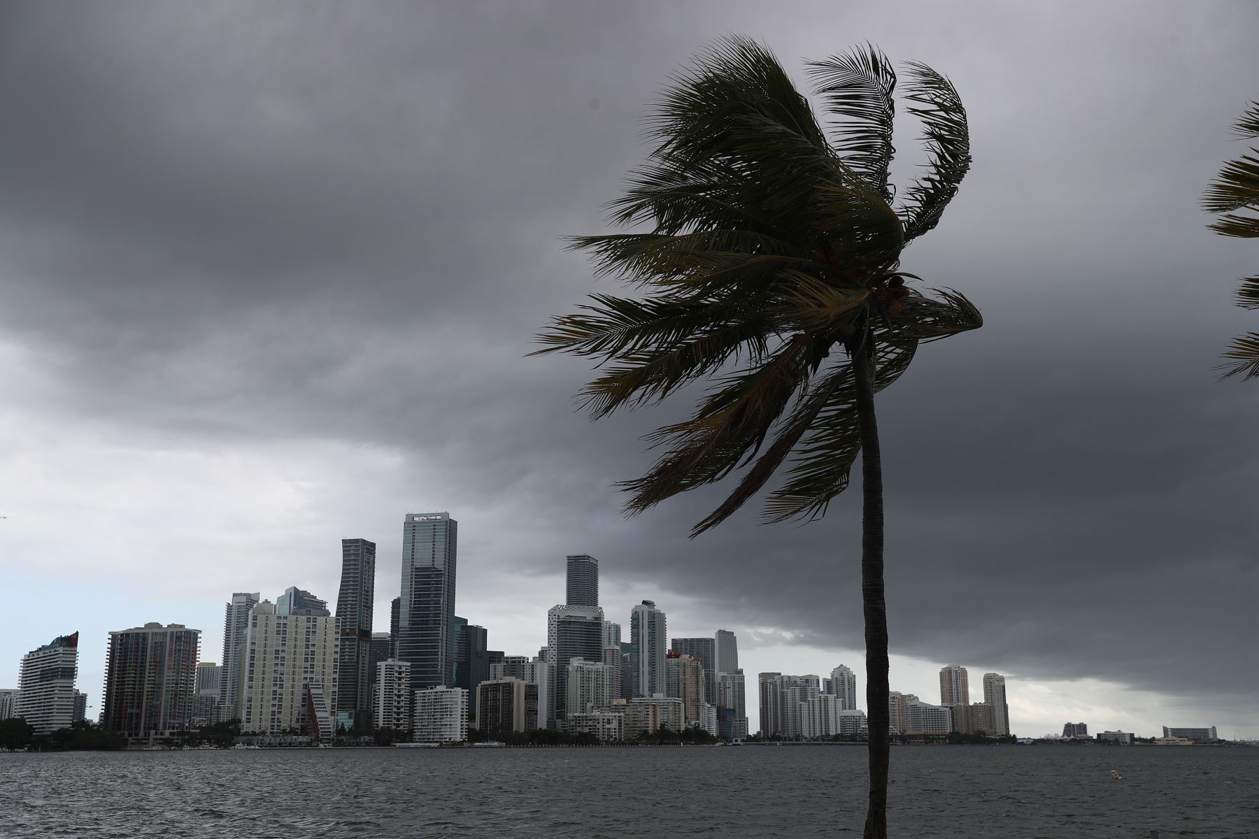 Se observan nubes de tormenta sobre la ciudad de Miami, Florida, cuando el huracán Isaias se acerca a la costa. Foto: AFP