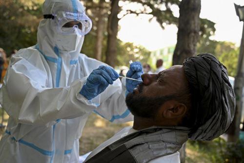 Coronavirus: casos de covid-19 superan los 19 millones en todo mundo