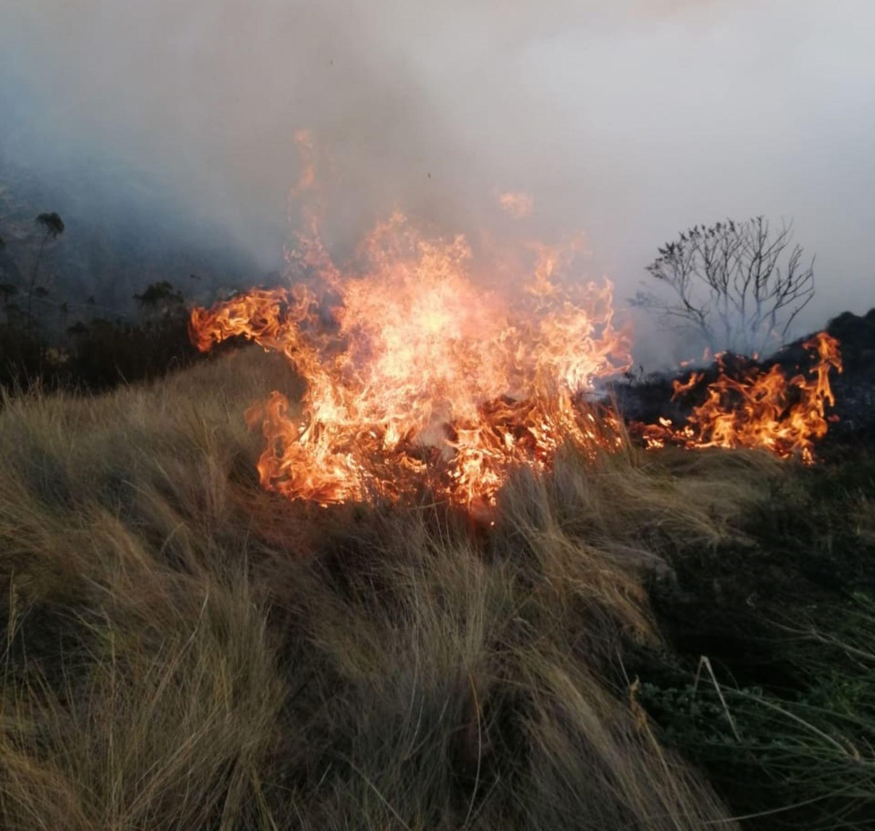 Todas las provincias del departamento del Cusco presentan condiciones medias a muy altas para la ocurrencia de incendios. Foto: ANDINA/Difusión