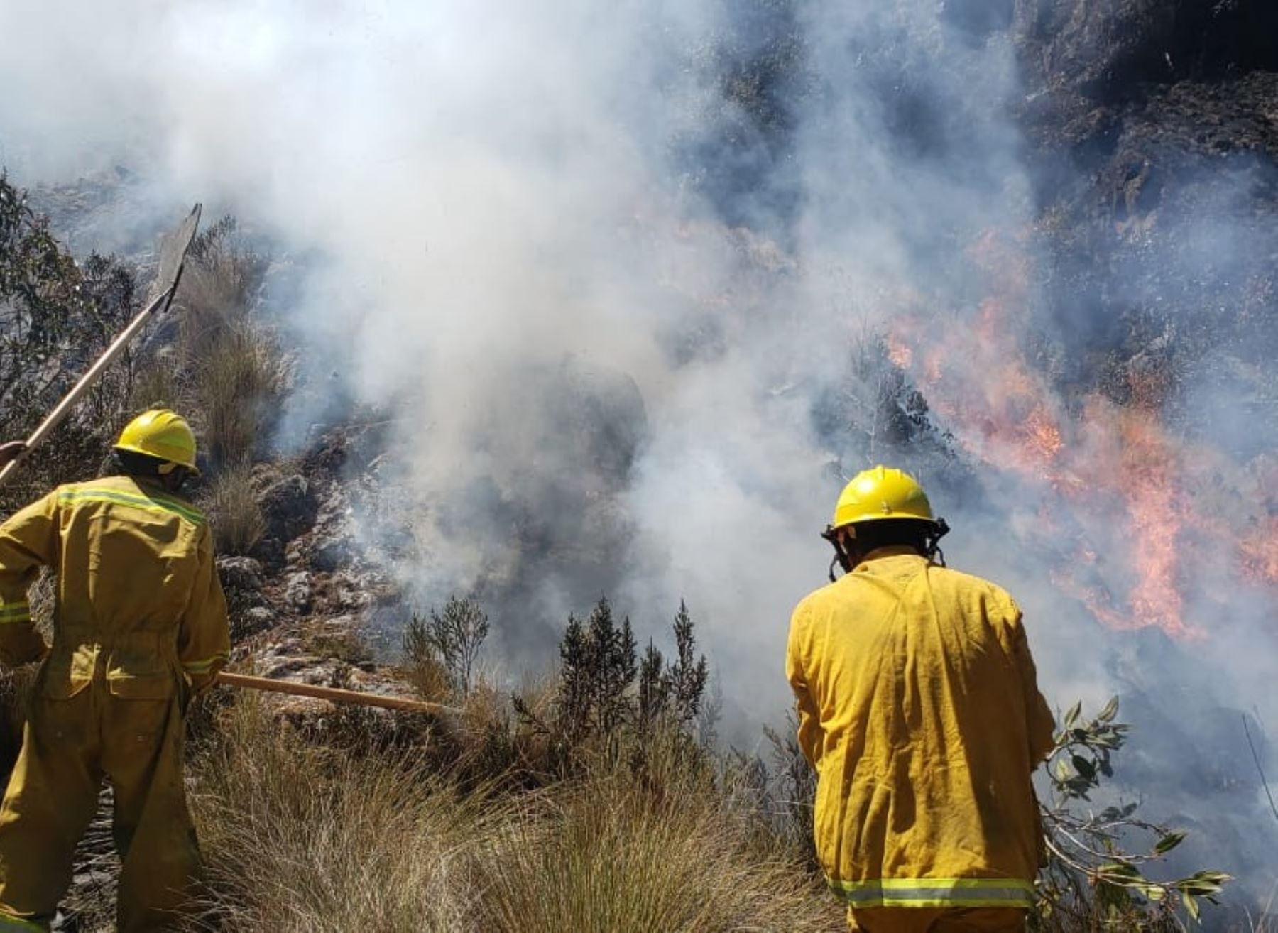 Guardaparques bomberos redoblan esfuerzos para extinguir incendios forestales en áreas cercanas al Parque Nacional Huascarán. ANDINA/Difusión