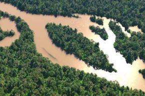 La pandemia ha abierto una inesperada ventana de oportunidades para edificar un futuro más limpio, verde, saludable y amigable con el ambiente para dejar atrás la explotación insostenible de los recursos de la Tierra. Foto: ANDINA/Minam
