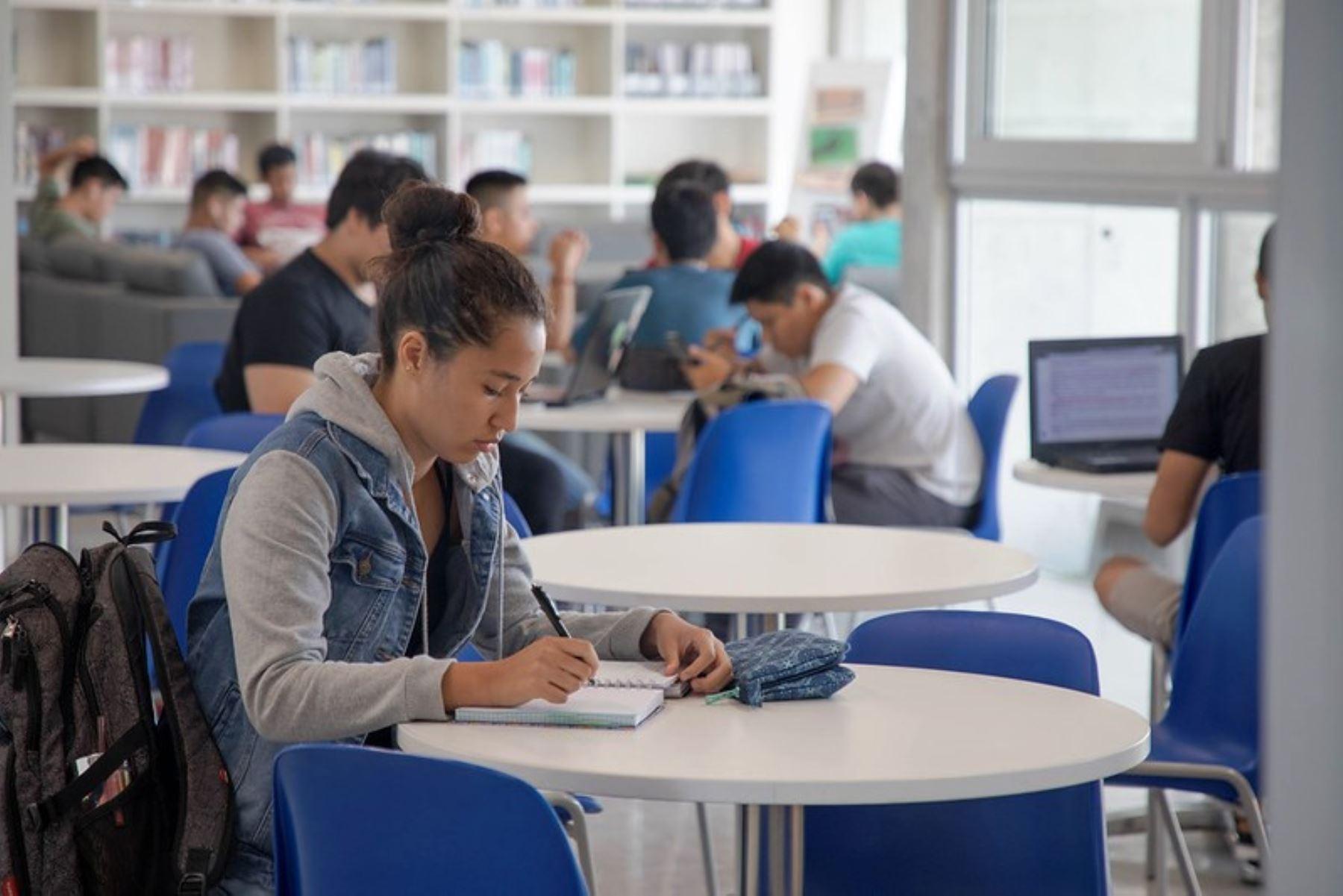 Beca Continuidad de Estudios: conoce aquí si fuiste seleccionado. Foto: ANDINA/Difusión.