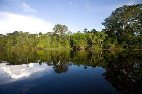 El cambio climático constituye un desafío para la sostenibilidad de la Amazonía y por esa razón, el Perú ha creado recientemente la Comisión de Alto Nivel de Cambio Climático. Foto: ANDINA/Minam