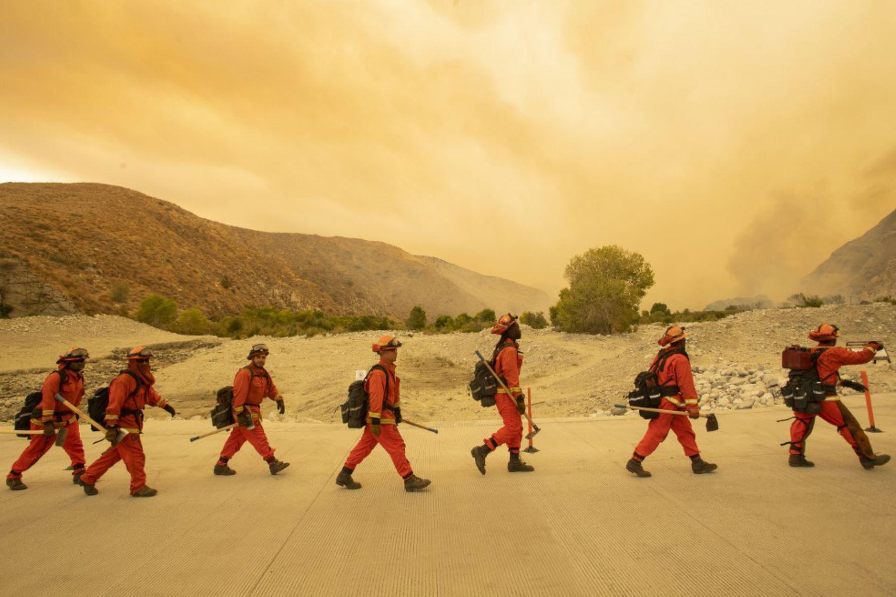 Bomberos llegan a la escena del incendio forestal en Whitewater, California. Foto: AFP