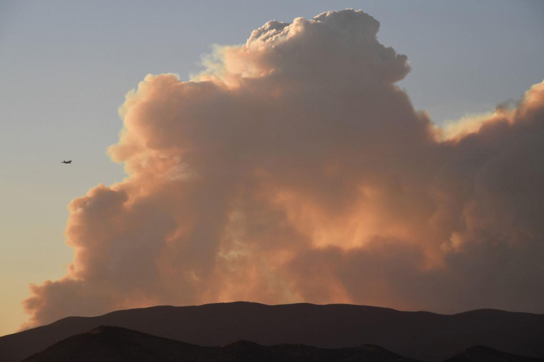 Un avión vuela por la columna de humo del Lake Fire en el Bosque Nacional Ángeles. Foto: AFP