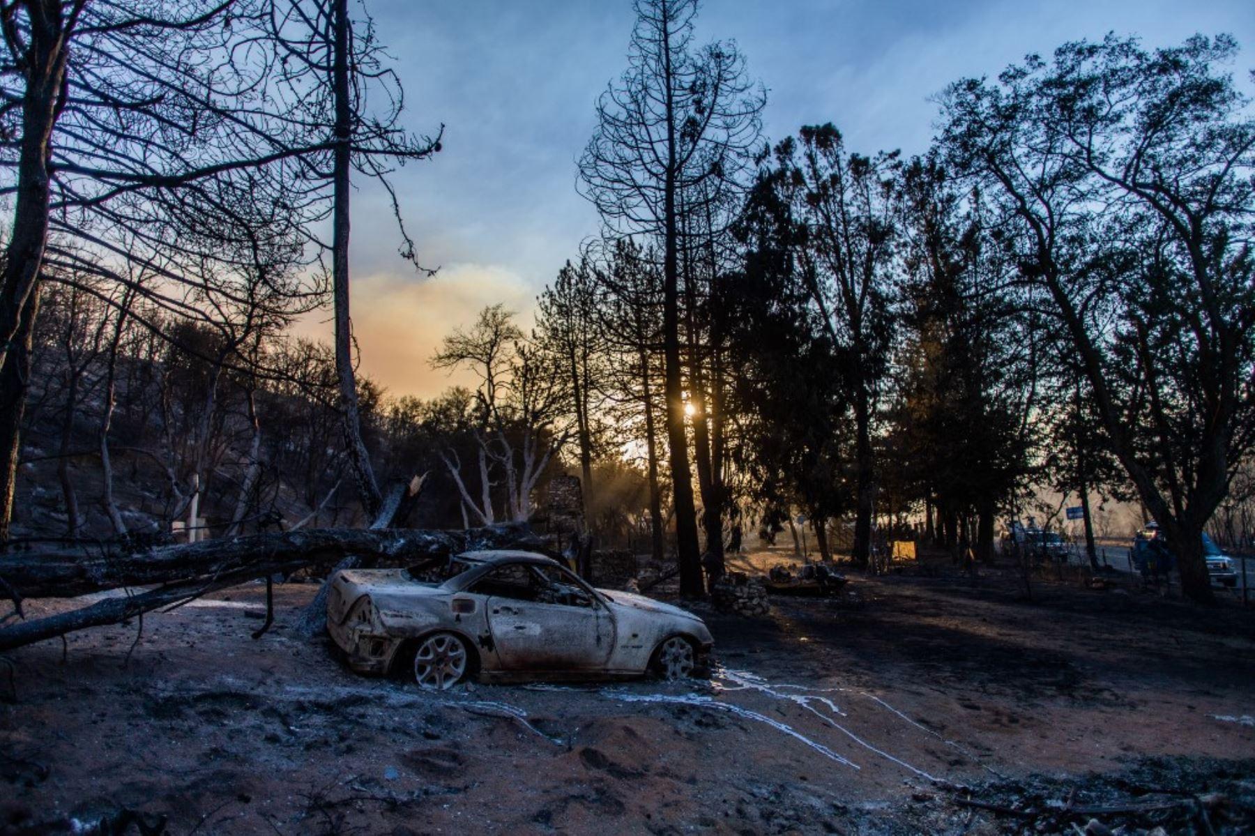 Un automóvil carbonizado se ve en Pine Canyon Road en el bosque nacional de Ángeles. Foto: AFP