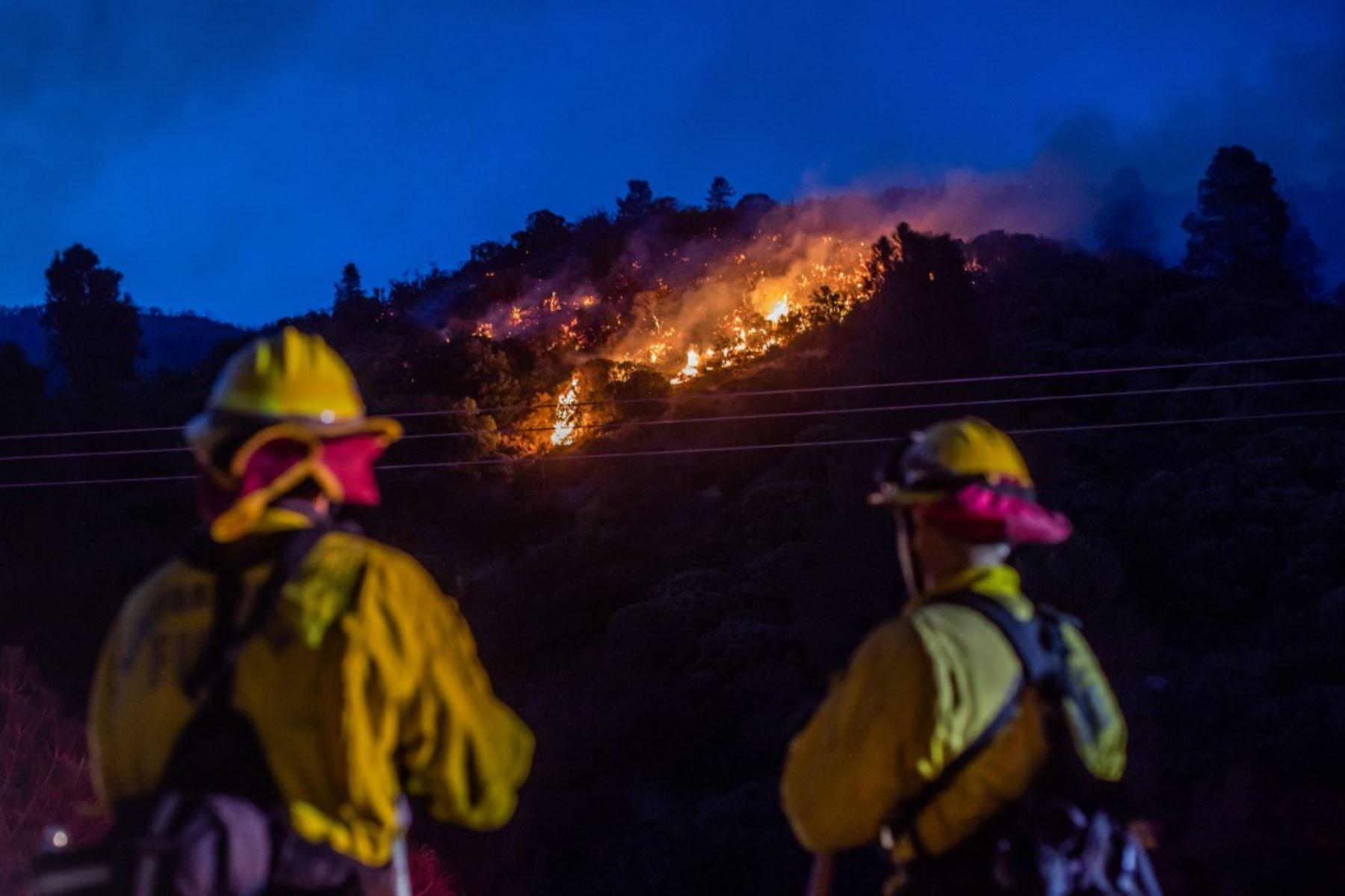 Los bomberos trabajan para extinguir las zonas de fuego del Lake Fire en Pine Canyon Road en el Bosque Nacional de Ángeles. Foto: AFP