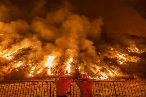EE.UU: incendio fuera de control consume bosque nacional en Los Ángeles