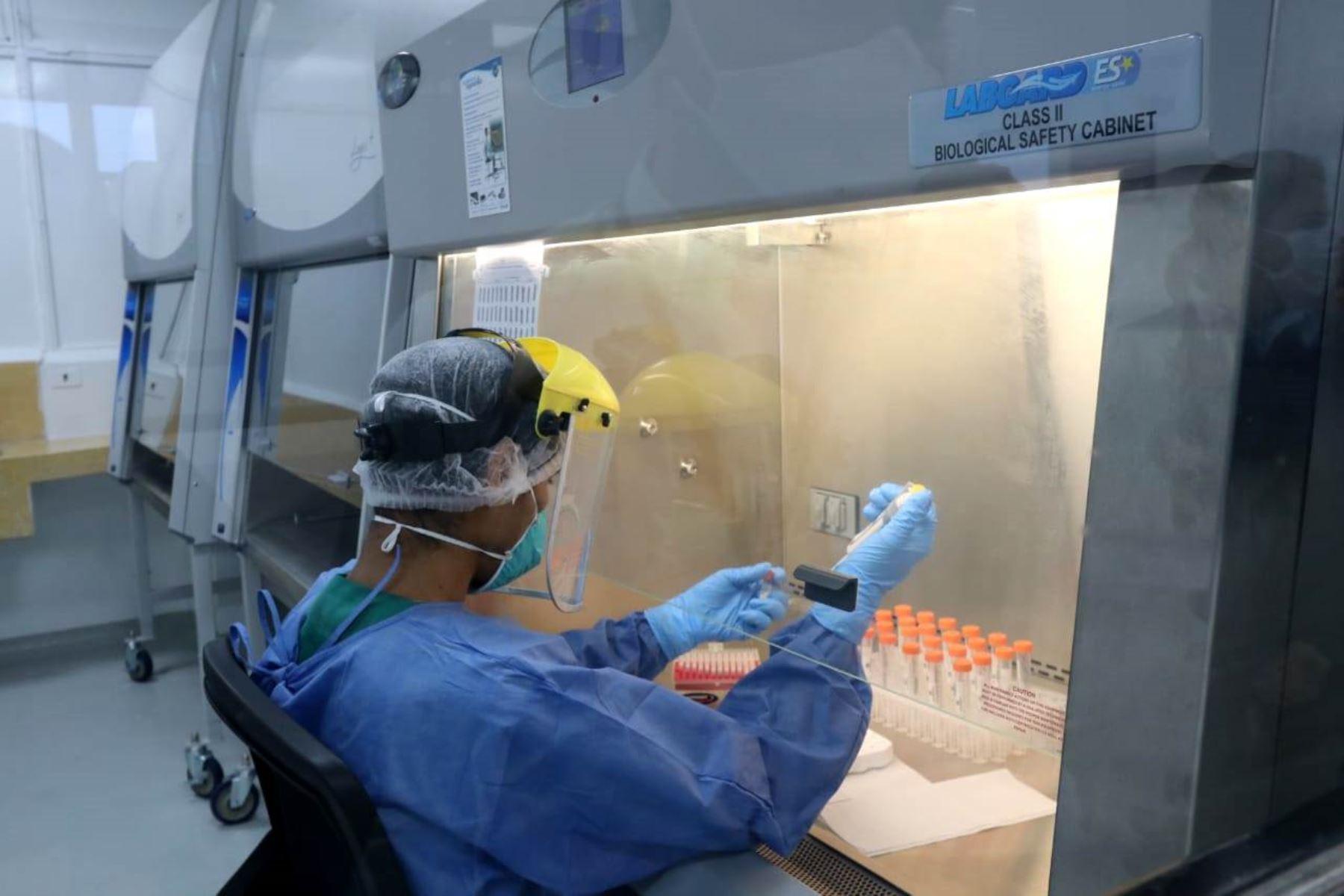 Expertos del Minsa se reunieron con investigadores que desarrollan pruebas moleculares | Noticias
