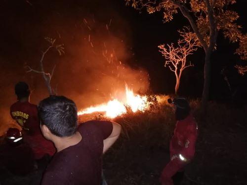 Organización internacional financiará proyecto del Serfor para prevenir incendios forestales en el Perú. ANDINA/Difusión