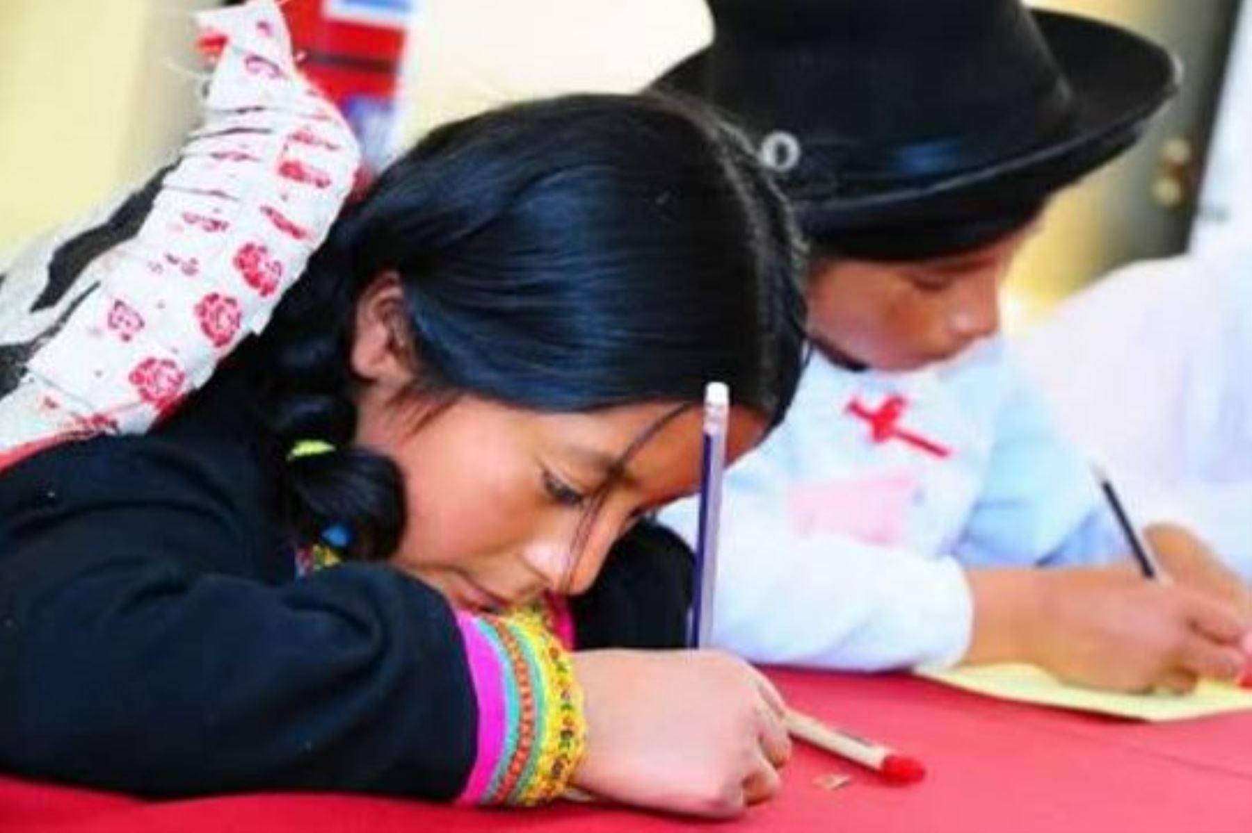 Minedu: obra con 100 preguntas sobre historia de Perú será traducida a lenguas originarias. Foto: ANDINA/Difusión.
