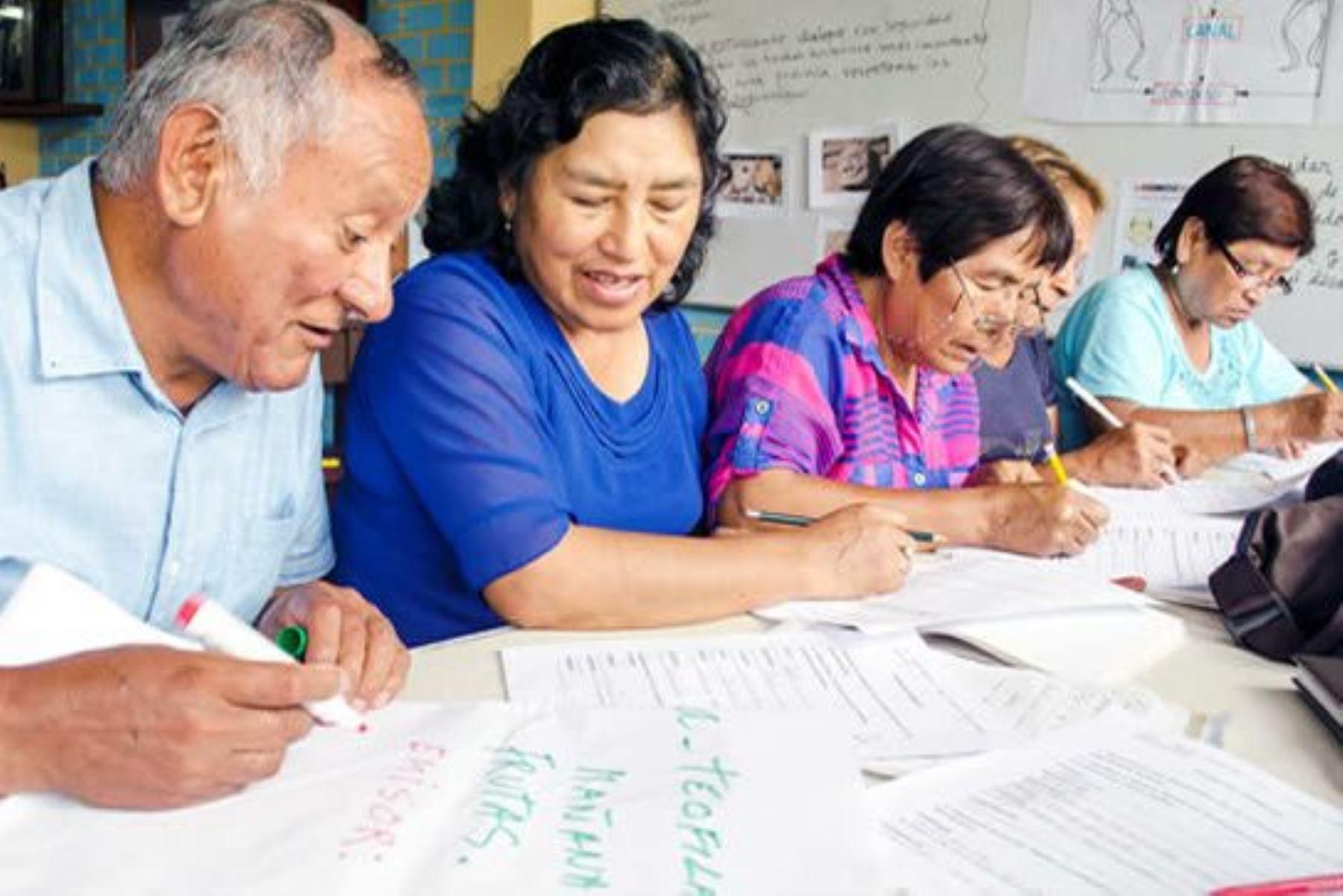 Minedu: especialistas analizarán avances de la educación básica alternativa. Foto: ANDINA/Difusión.