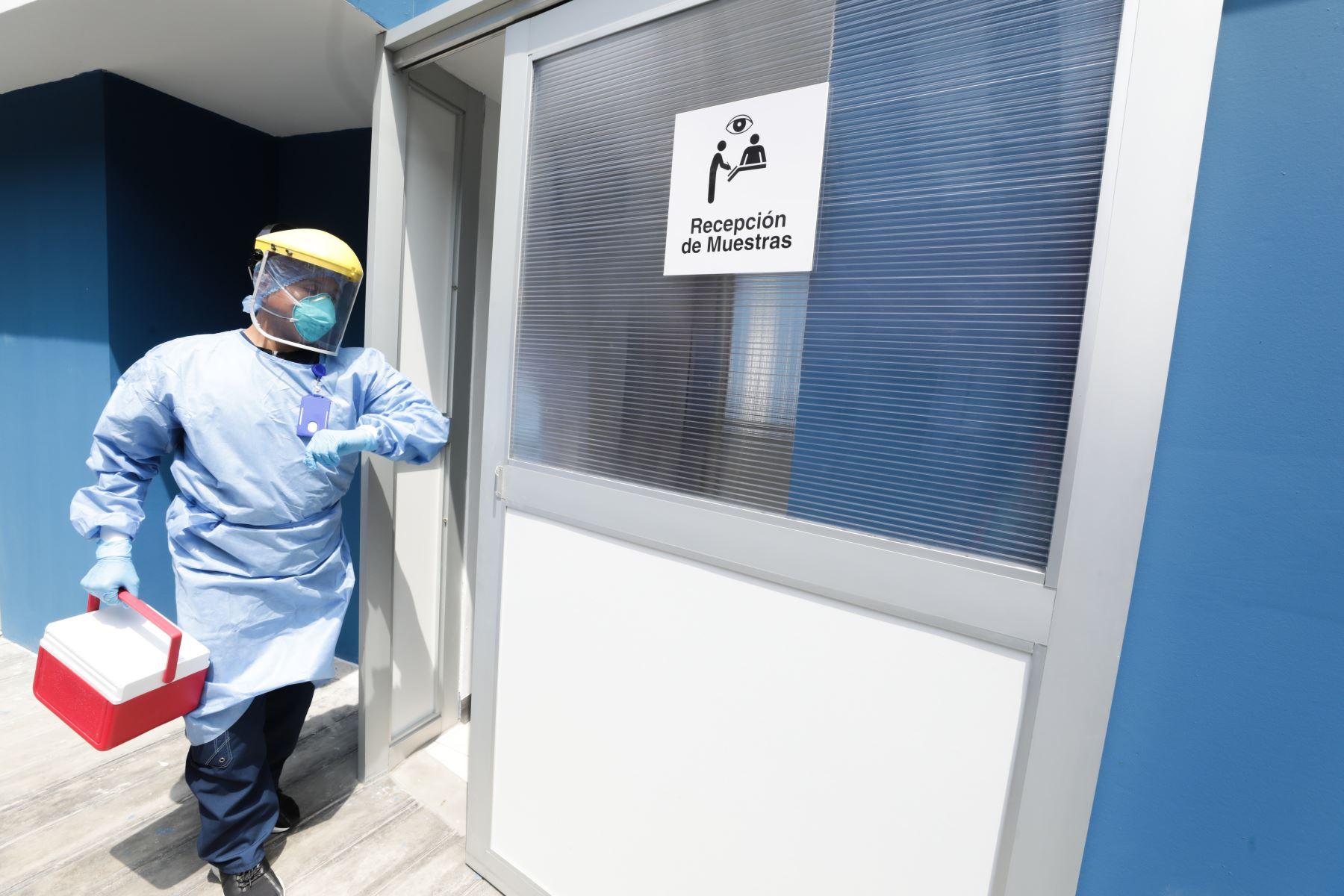 El laboratorio molecular del hospital Guillermo Almenara cuenta con un equipo multidisciplinario de ocho personas, entre patólogos clínicos, biólogos, tecnólogos y técnicos de laboratorio, con una amplia experiencia en técnicas de análisis molecular.Foto:ANDINA/Essalud