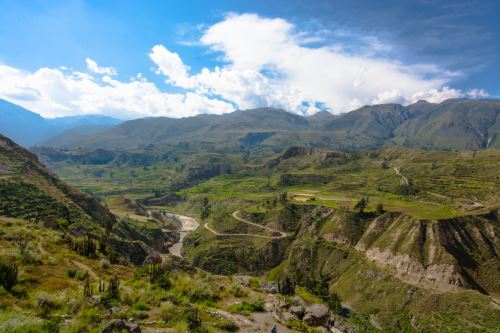 Colca Canyon. Photo: Autocolca