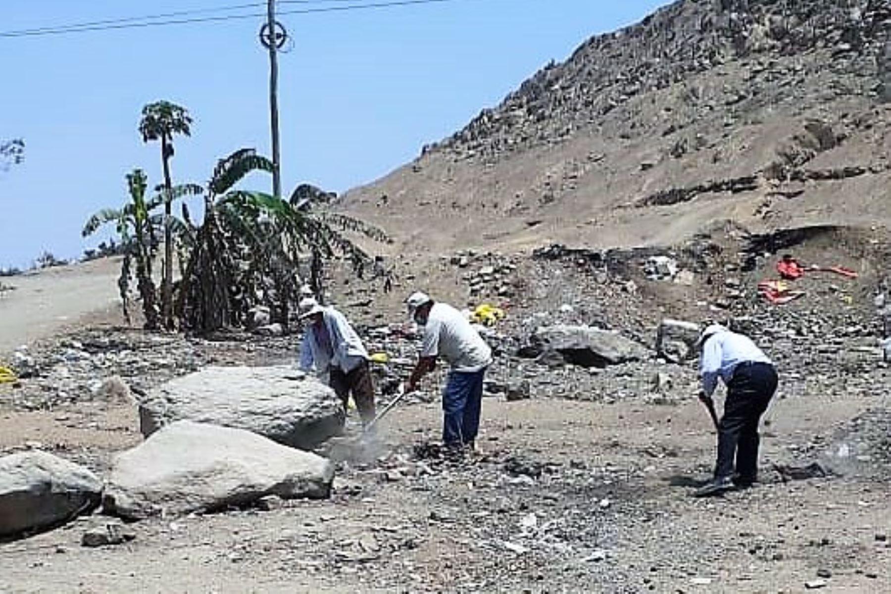 Jornada de limpieza en el sitio arqueológico Farfán, en la región La Libertad. ANDINA/Difusión