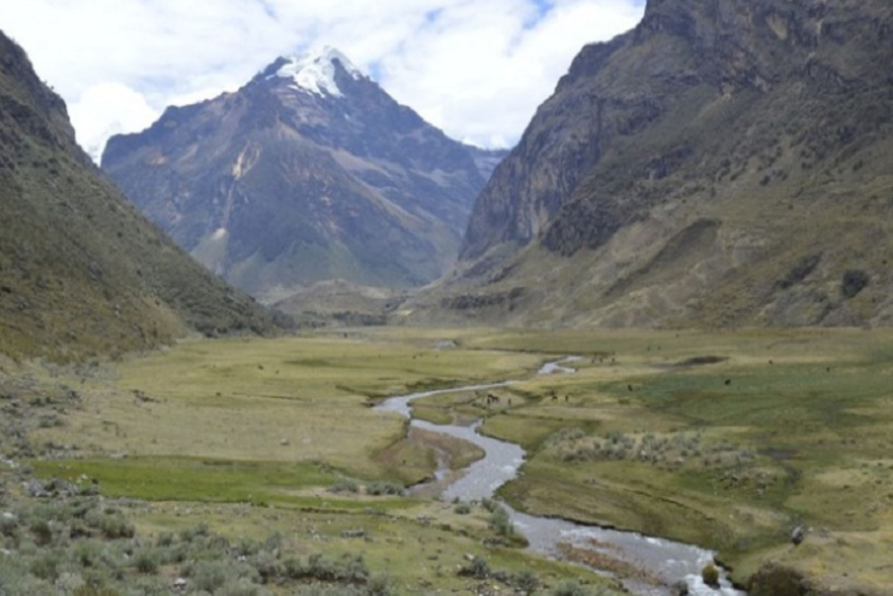 Perú contará con su primer inventario nacional de humedales altoandinos | Noticias