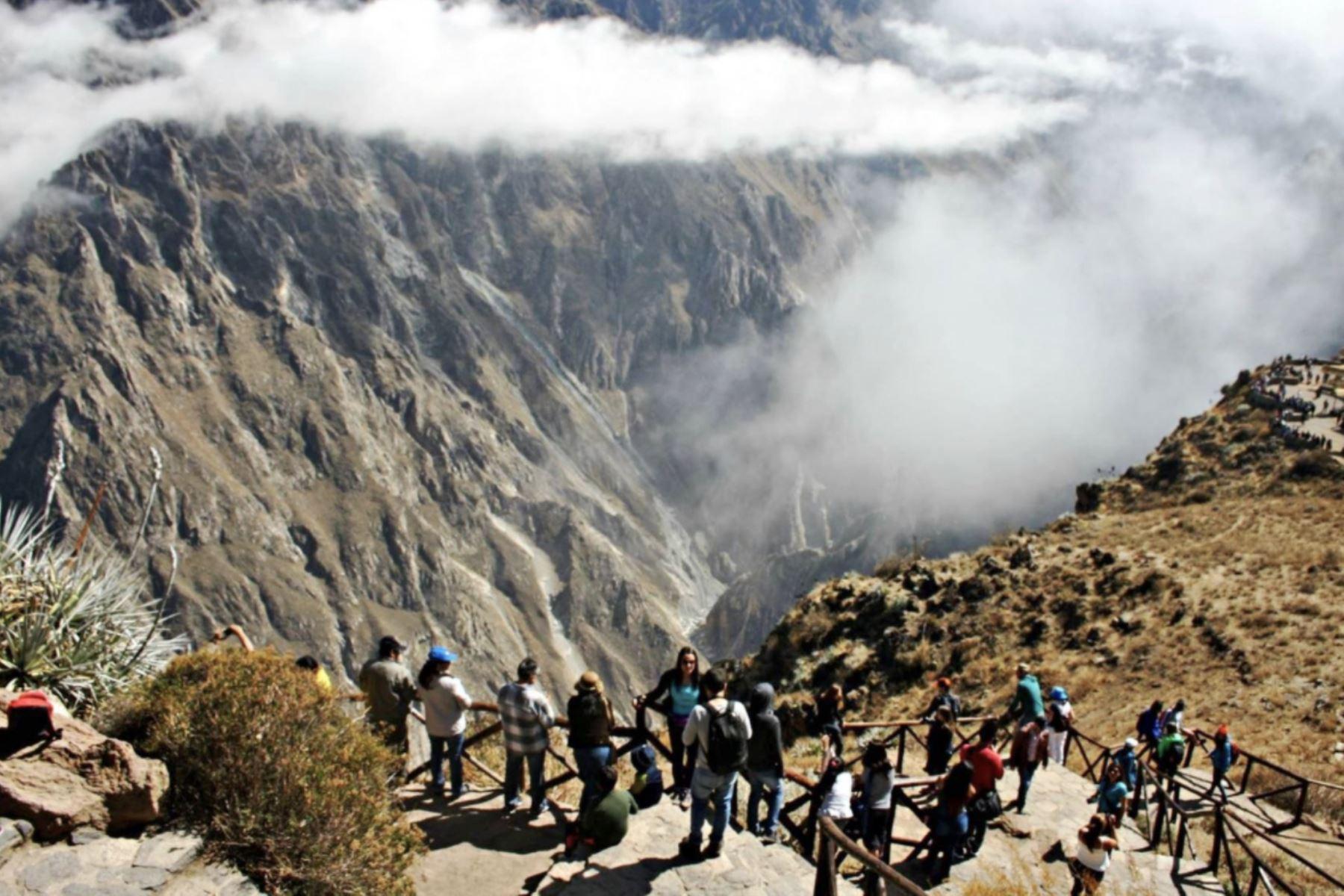 """El Cañón del Colca, uno de los más profundos del planeta y poseedor de una deslumbrante belleza paisajística, está nominado como """"Mejor atracción turística natural"""" en los World Travel Awards 2020. ANDINA/Archivo"""