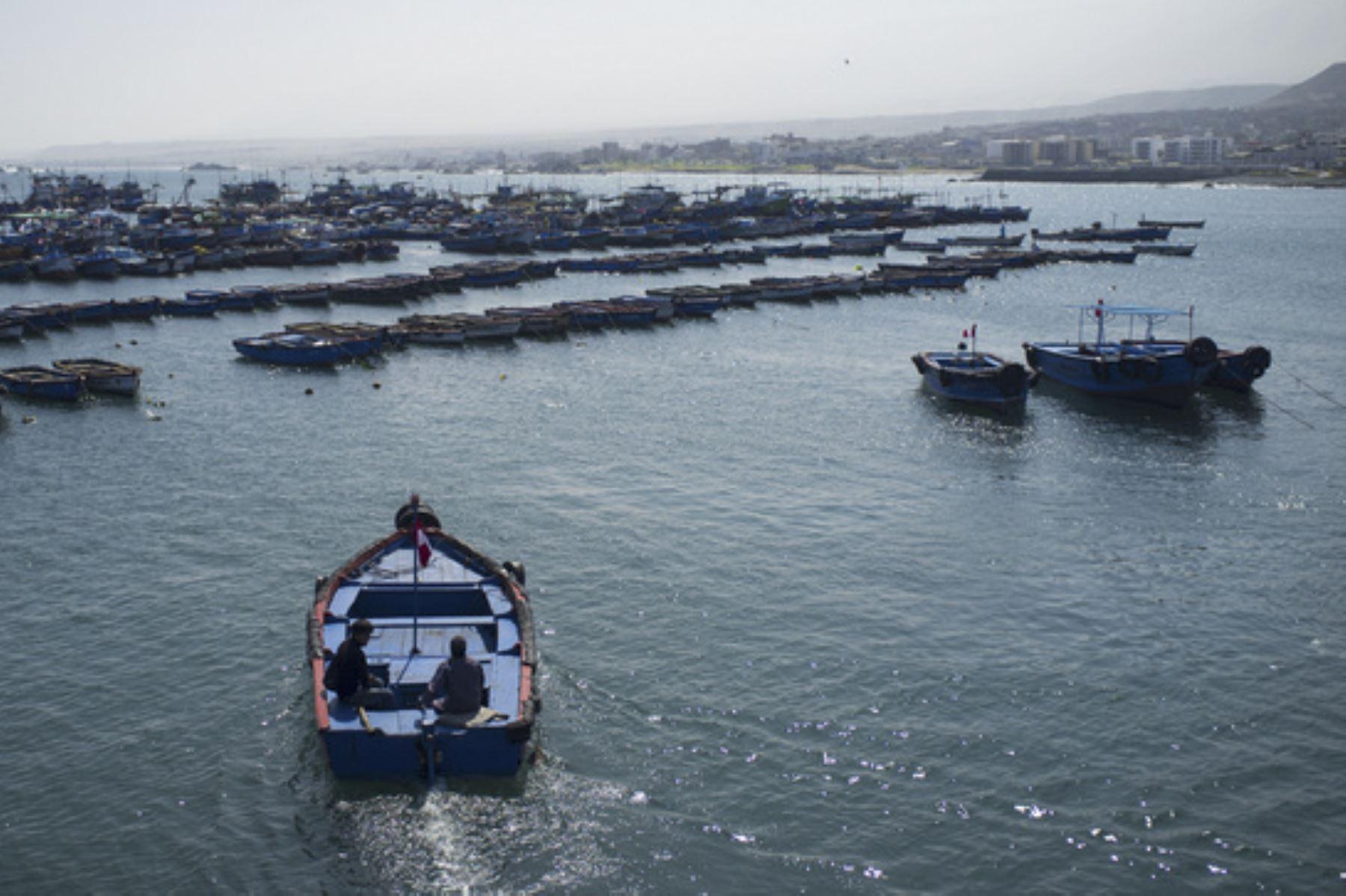 El Minam articula acciones participativas con los gobiernos regionales y locales de las jurisdicciones del litoral, tal como se trabaja en Piura, Lambayeque, La Libertad y Lima. Foto: ANDINA/Difusión