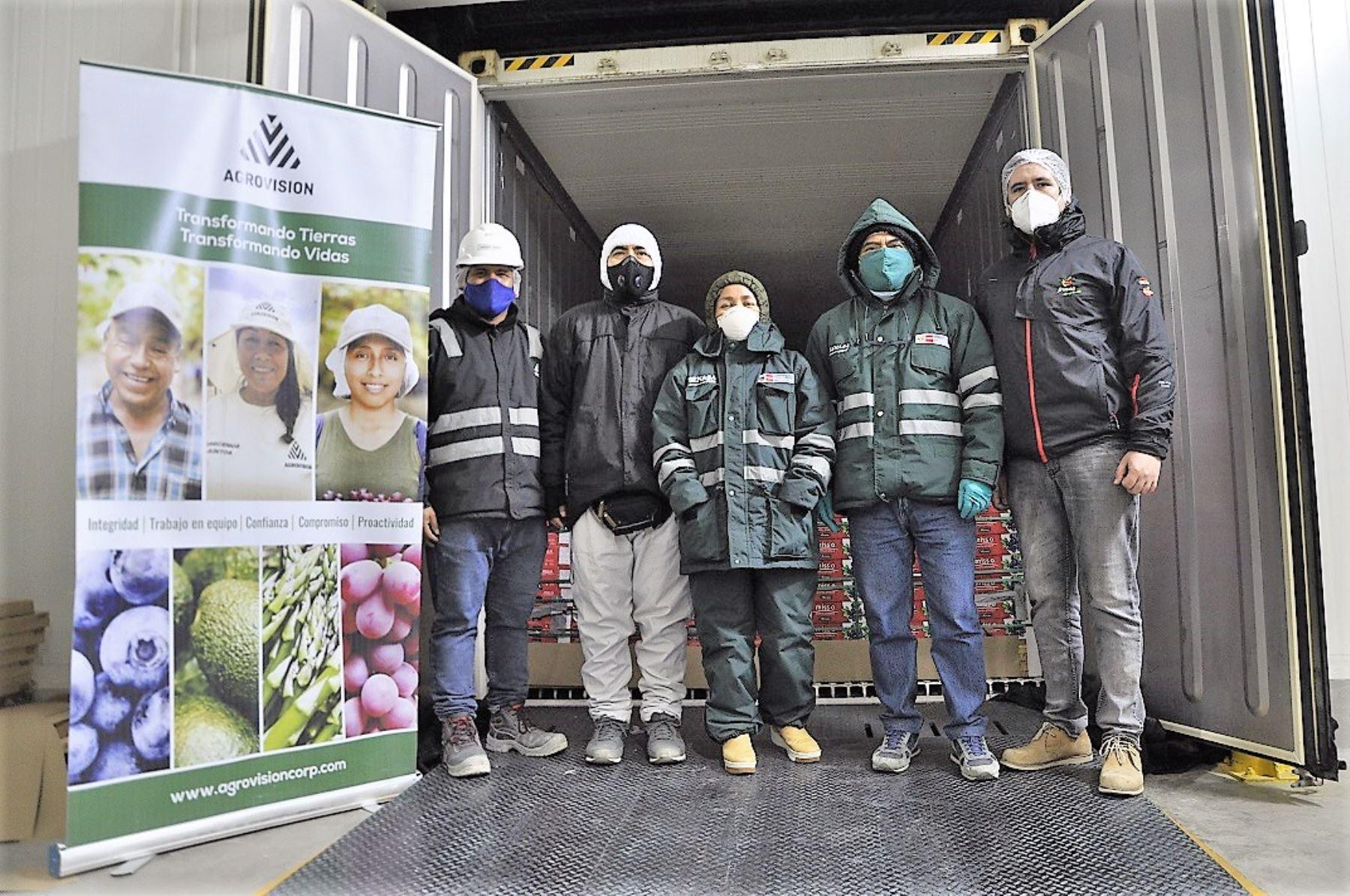 Productores agrarios de la región Lambayeque comenzaron a exportar arándanos hacia Taiwán. Foto: ANDINA/Difusión