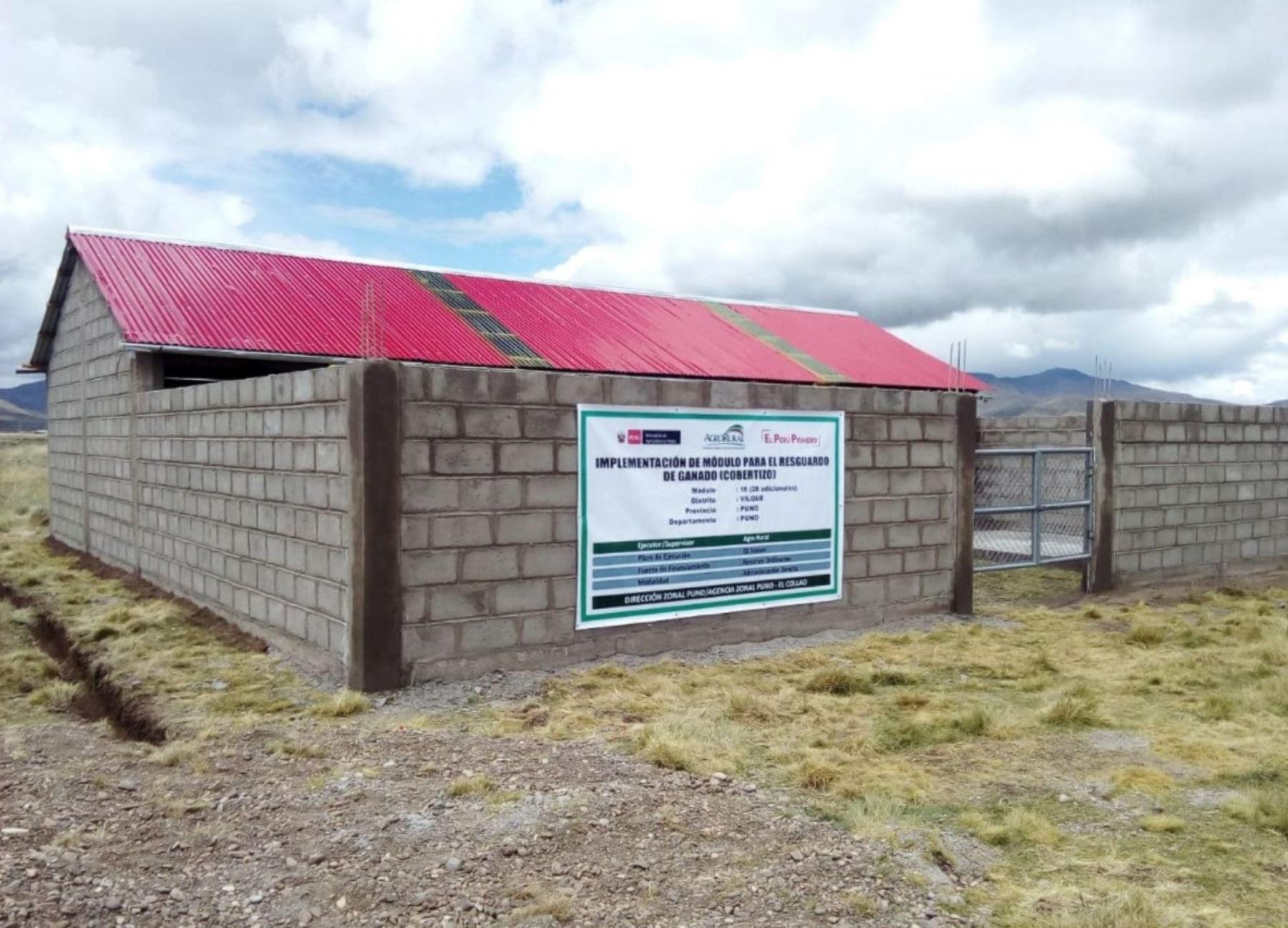 Puno: construcción de cobertizos para ganado generará más de 5,000 empleos | Noticias