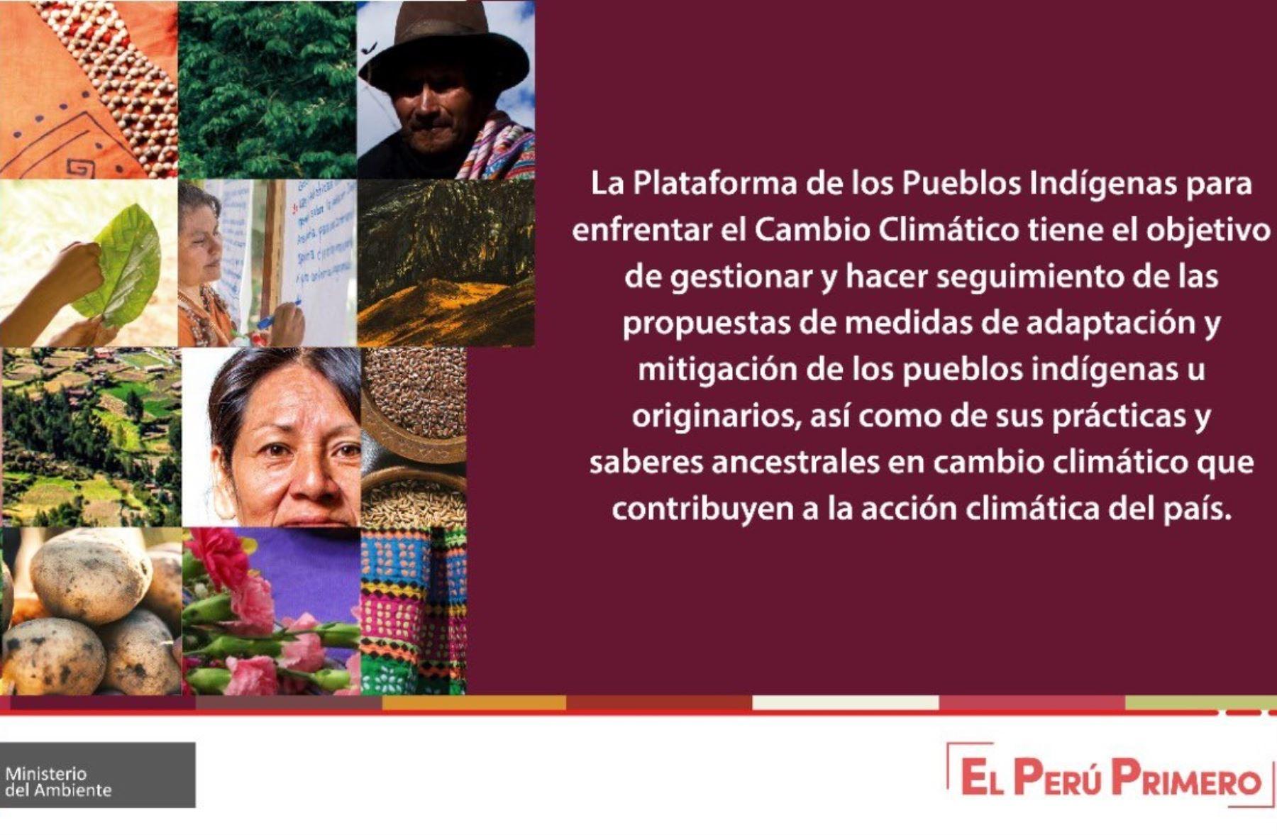 Ejecutivo instaló la Plataforma de los Pueblos Indígenas para enfrentar el Cambio Climático.