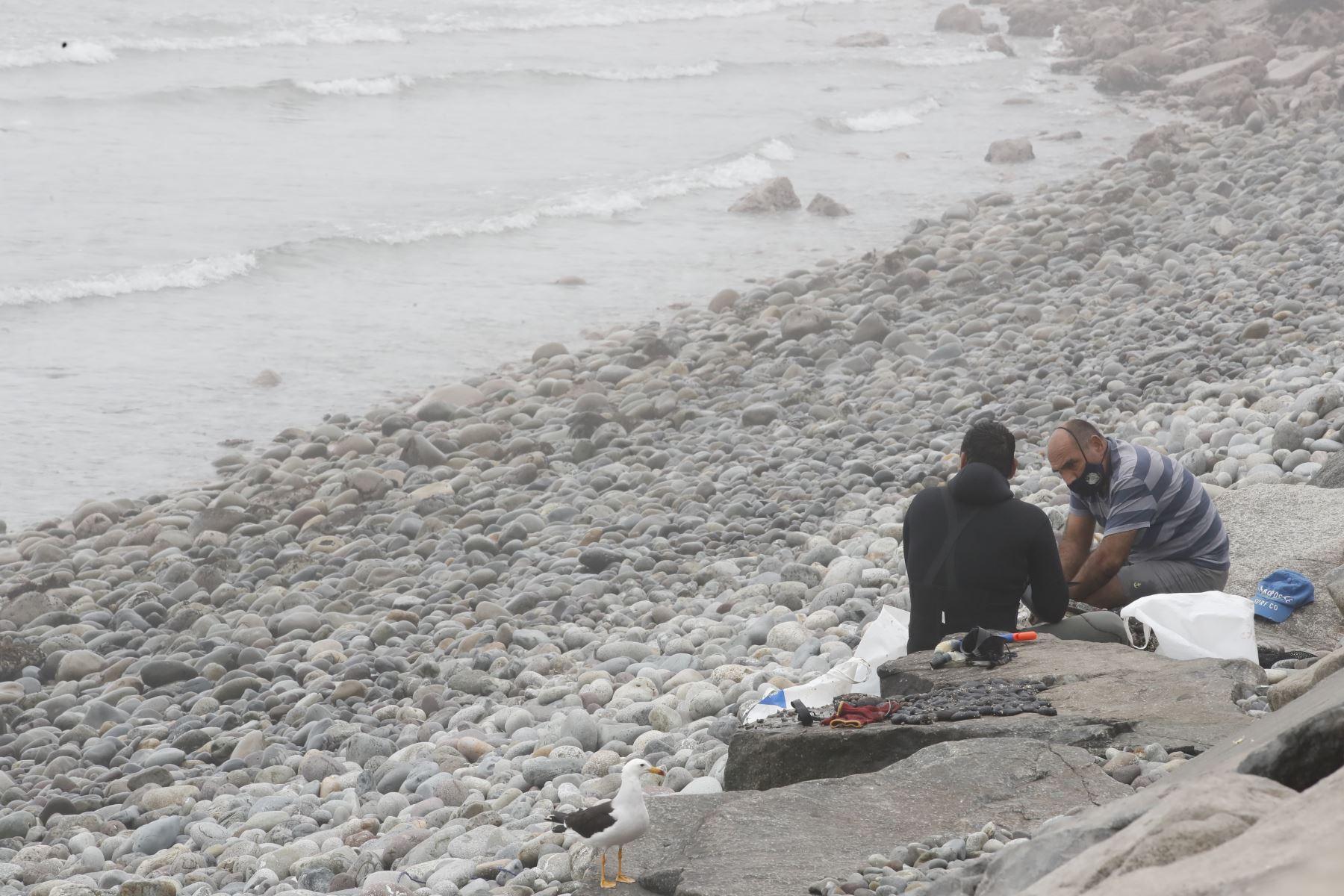Playas se podrían convertir en nuevos focos de contagio del covid-19. Foto: ANDINA/Juan Carlos Guzmán.