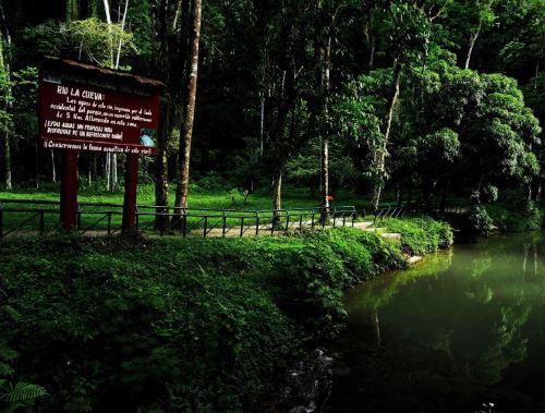 Otras tres áreas naturales protegidas, el Parque Nacional Tingo María, Santuario Nacional Ampay y la Reserva Nacional de Junín, reanudan sus actividades turísticas.