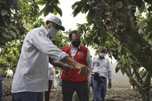Ministro de la Producción visita a productores de aceite de palma y cacao en la región San Martín