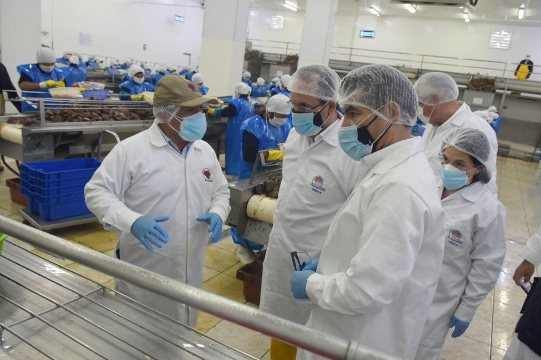 Ministro de la Producción, José Salardi (al centro), inspecciona procesos de productos hidrobiológicos para la exportación en Casma. Foto: Cortesía.