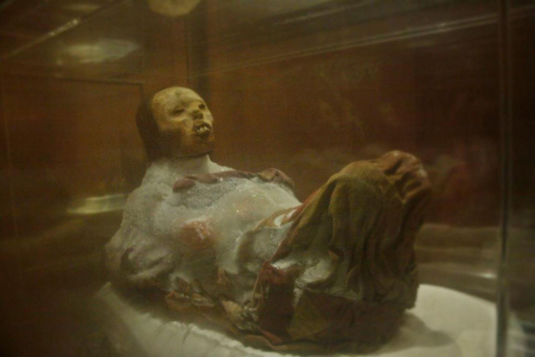 El Museo Santuarios Andinos, de Arequipa, que alberga a la momia Juanita, recibe desde hoy a turistas. Foto: Cortesía